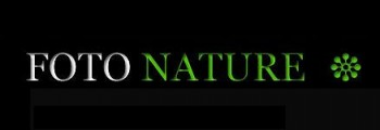 Adeus Nature Workshops